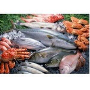 Gerecht met vis