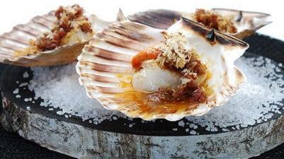 Coquilles in de schelp gebakken met ui, ham en witte wijn