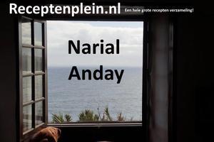Narial anday