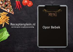 Opor Bebek