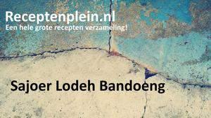 Sajoer Lodeh Bandoeng