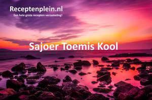 Sajoer Toemis Kool 2