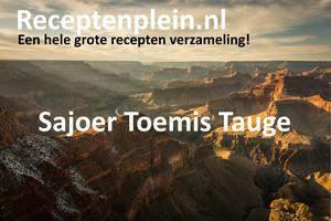 Sajoer Toemis Tauge 2