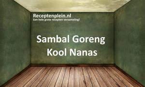 Sambal Goreng Kool Nanas