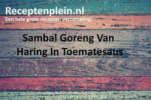 Sambal Goreng Van Haring In Toematesaus
