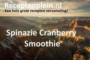 Spinazie Cranberry Smoothie