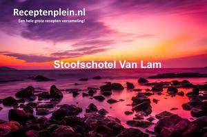 Stoofschotel Van Lam