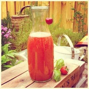 Slow Juice Rood 02