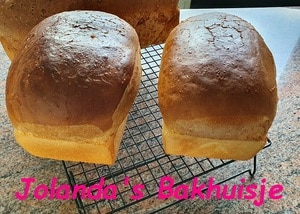 Melk brood