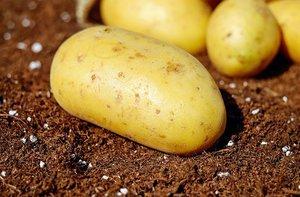 Aardappel amandelsoep