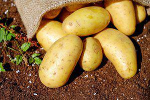 Aardappel ovenschotel met kabeljauw in folie
